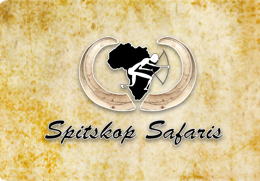 Spitskop Safaris
